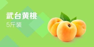 7月底發貨全國包郵五斤黃桃