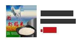 淮安白馬湖蝦稻米500g